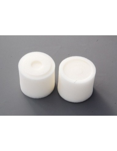 Recambio espuma filtro aire 1/10 (2PCS)