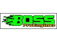 Motores Boss